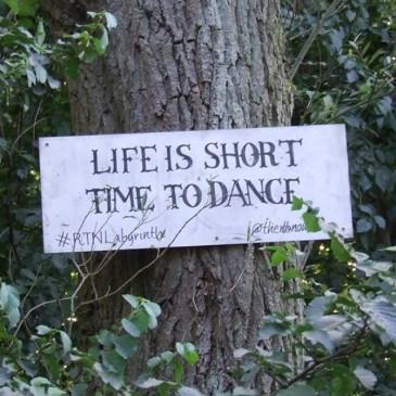 FESTIVAL.FUN,DANCE,PARTY,FESTIVAL BLOG